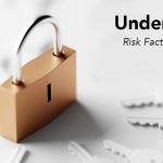 Understand Risk, Unlock Value